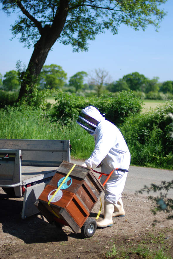 20140517_Bee delivery_0001
